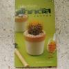 มือใหม่หัดปลูกแคคตัส : Easy Cactus