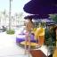 SM-V1-028 ชุดว่ายน้ำแฟชั่น คนอ้วน เด็ก ดารา thumbnail 5