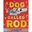 Tim Hopgood : A Dog Called Rod ทิม ฮอปกู๊ด นิทานภาพ ปกอ่อน หมาน้อยที่ชื่อว่ารอท thumbnail 3