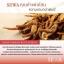 SEWA น้ำโสม เซว่า by วีเจวุ้นเส้น ปลายทางฟรี 1 วันทั่วไทย thumbnail 13