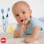 ชุดฝึกแปรงฟัน Nuk สำหรับเด็ก 6 เดือนขึ้นไป Training Toothbrush Set + Protective Ring thumbnail 2