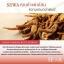 SEWA น้ำโสม เซว่า by วีเจวุ้นเส้น ปลายทางฟรี 1 วันทั่วไทย thumbnail 10
