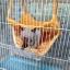 Spider ที่นอนหัวตุ๊กตา ส้มน้องแรดน้อย thumbnail 3