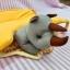 Spider ที่นอนหัวตุ๊กตา ส้มน้องแรดน้อย thumbnail 2