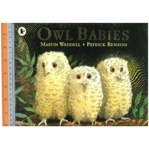 owl babies -นิทานปกอ่อน