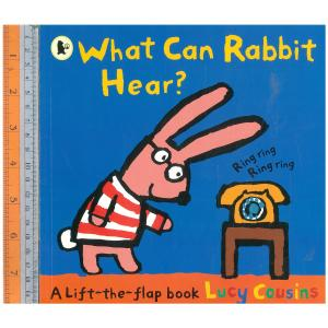 What can rabbit