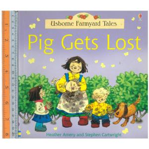 Pig lost