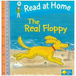 The real floppy