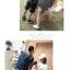 กระเป๋ากล้อง ถ่ายรูป เลนส์ CA001 BLUE thumbnail 8