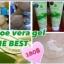 S Vera Aloe vera Gel With Q10 เจลว่านหางจระเข้ผสม Q10 thumbnail 7