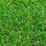 หญ้าเทียม GL-X240B(1x2เมตร)