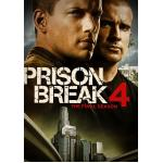 DVD Prison Break แผนลับแหกคุกนรก (Season 4) 6 แผ่นจบ (Master ซับไทย)