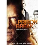 DVD Prison Break แผนลับแหกคุกนรก (Season 3) 3 แผ่นจบ (ซับไทย)