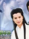 DVD/V2D The Condor Heroes (1995) มังกรหยก ตอน กำเนิดเอี้ยก้วย 4 แผ่นจบ (พากย์ไทย)