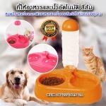 P-895 ที่ให้อาหารและน้ำอัตโนมัติ สำหรับสุนัขและแมว ถาดใส่อาหาร ที่ให้อาหารสุนัข ที่ให้อาหารแมว ชามอาหารสุนัข เครื่องให้อาหารสุนัข เครื่องให้อาหารแมว (สีส้ม)