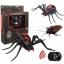 แมงมุมบังคับ Spider Toy thumbnail 2