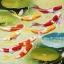 อุปกรณ์งานฝีมือ DIY ครอสติสคริสตัลรูปคราฟ 9 ตัวดอกบัว (เล็ก) thumbnail 1