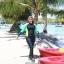 ชุดว่ายน้ำคนอ้วน พร้อมส่ง :ชุดว่ายน้ำไซส์ใหญ่แฟชั่นดำแต่งสีสันสดใส set 3 ชิ้นมีเสื้อแขนยาว บิกินี่ และกางเกงขายาวติดกางเกงขาสั้นด้านนอก แบบน่ารักมากๆจ้า:รายละเอียดไซส์คลิกเลยจ้า thumbnail 6