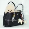 กระเป๋าสะพายแฟชั่น กระเป๋าสะพายข้างผู้หญิง Garden Bag [สีดำ]