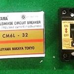 เบรกเกอร์กันดูด Fujiyama 30A