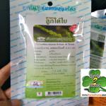 ลูกใต้ใบชาชง ธันยพร(20 ซอง) เครื่องดื่มชนิดชง ในถุงกรองชา สรรพคุณแก้ไข้ ร้อนใน บำรุงตับ สลายไขมัน ลดความอ้วน และลดน้ำตาลในเลือดได้ดี