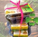 มะขามป้อมแช่อิ่มอบแห้ง ลูกใหญ่ 600 กรัม (อมาลิกา) ของฝากเพื่อสุขภาพ