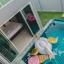 บ้าน ทวี พูลวิลล่า หัวหิน ซอย 70 3ห้องนอน 2ห้องน้ำ thumbnail 6