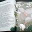 Andersen's Fairytales thumbnail 5