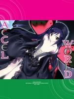 [กล่องเปล่า] Accel World ชุด 1