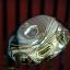 Fw.Maruman Majesty prestigio Gold Premium W.3 16* / Gold premium (Flex S) thumbnail 2