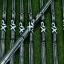Iron set Epon AF-702 5-9,P,A,S / True Temper XP95 S200 (Flex S) thumbnail 4