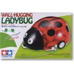มี1 รอยืนยันก่อนโอน 70195 wall-hugging ladybug