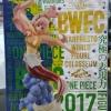 38262 OP WORLD FIGURE COLOSSEUM VOL5// สุง 18 cm