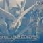 Gundam Base Tokyo RG 1/144 OO Raiser Clear Color