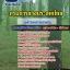 แนวข้อสอบพนักงานการเกษตร กรมการยางประเทศไทย [พร้อมเฉลย] thumbnail 1