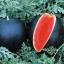 แตงโมดำ (watermelon) จำนวน 25 เมล็ด thumbnail 2