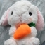 ตุ๊กตากระต่ายน้อยหูยาว สีขาว 40 cm. thumbnail 1