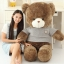 ตุ๊กตาหมี อ้วน-เสื้อสีเทา น่ารักๆ ขนาด 1.2 เมตร thumbnail 1