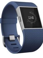 Fitbit Surge, BLUE Large - English