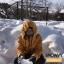 เสื้อกันหนาว SNOWVY : (สีชมพูเข้ม) ทรงขนเป็ดเข้ารูป แขนยาวถึงมือ -15c เอาอยู่ thumbnail 121