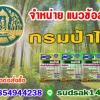 ((NEW))แนวข้อสอบกรมป่าไม้ กรมทรัพยากรธรรมชาติและสิ่งแวดล้อม ประจำปี2561