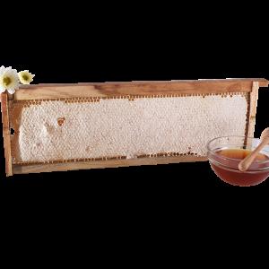 รวงรังผึ้งคอนไม้