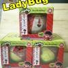 ไข่ตุ๊กตาของเล่น ดูดนม ฉี่ ร้องไห้ พ่นน้ำ เปลี่ยนสี LOL Surprise Egg LadyBug ลูกใหญ่ 10 ซม แพ็คเดี่ยว