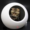 รีวิว First Impression บ้านสัตว์เลี้ยงอัจฉริยะ Smart Pet House ของ PETKIT รุ่น COZY สวยล้ำและพรั่งพร้อมด้วยเทคโนโลยีสมกับยุค PET 4.0