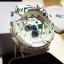 นาฬิกา Casio Baby-G Scratch Graffiti Design series รุ่น BA-120SC-7A ของแท้ รับประกันศูนย์ 1 ปี thumbnail 3