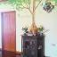 จับโบ้ ต้นเขียวสูง 204cm a110 thumbnail 3