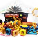 258 ชิ้น ตัวต่อแม่เหล็ก ของ MAG-WISDOM