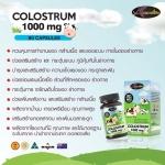 Auswelllife Colostrum นมเหลือง เสริมสร้างกระดูกและฟัน และระบบภูมิคุ้มกัน