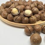 ถั่วแมคคาเดเมียมีเปลือก อเมริกา (USA Macadamia)