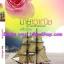 มายาวาณิช / พลิ้วอ่อน หนังสือใหม่ thumbnail 1